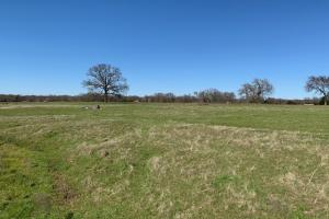<p>Open pasture with rolling terrain on 16 acres North of Mabank&nbsp;</p>