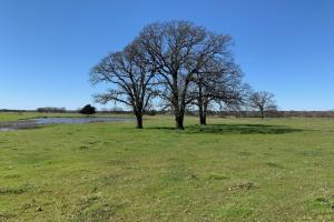 <p>Great Building Site on 16 acres North of Mabank&nbsp;</p>