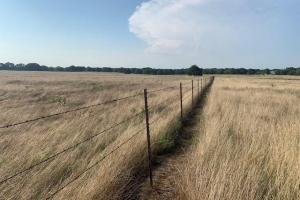10 acre tract North of Mabank  (3 of 6)