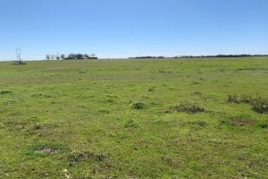 10 acres north of Mabank, surrounded by countryside views (2 of 6)