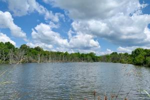Tom's Creek Cabin - Hunting and Fishing - Sumter County AL
