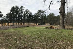 7-Acre Red Barn Road Homesite in Pickens, SC (6 of 15)