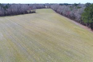 Commercial Investment Land near Manheim Auto Auction in Johnston, NC (2 of 16)