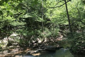 68+/- Acres Wilson Creek Property in Van Buren, AR (6 of 16)