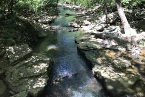 68+/- Acres Wilson Creek Property in Van Buren, AR (2 of 16)