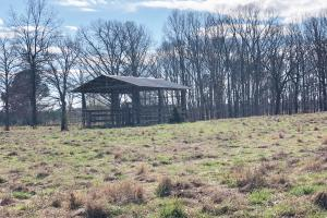 Phil Campbell Cattle Farm and Homesite in Franklin, AL (13 of 23)