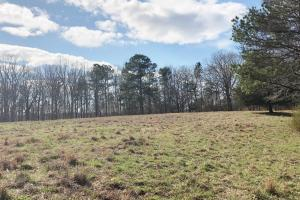 Phil Campbell Cattle Farm and Homesite in Franklin, AL (7 of 23)