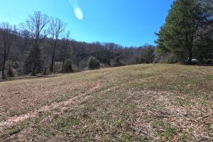 Eastern facing pasture, Mini Farm Pastures with Ridge Views and Waterfall  (18 of 38)