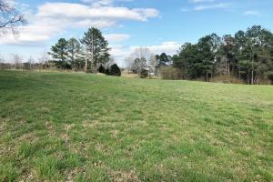 Pretty Branch Homesite and Recreational Property in Franklin, AL (15 of 19)