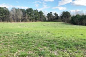 Pretty Branch Homesite and Recreational Property in Franklin, AL (10 of 19)