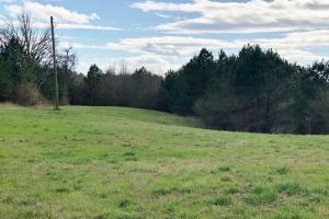 Pretty Branch Homesite and Recreational Property in Franklin, AL (17 of 19)