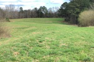 Pretty Branch Homesite and Recreational Property in Franklin, AL (8 of 19)
