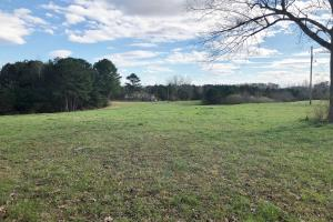 Pretty Branch Homesite and Recreational Property in Franklin, AL (4 of 19)