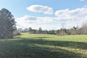 Pretty Branch Homesite and Recreational Property in Franklin, AL (19 of 19)