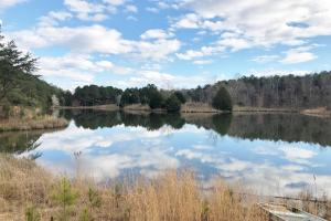 Pretty Branch Homesite and Recreational Property in Franklin, AL (2 of 19)