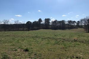 County Road Cattle Farm and Homesite