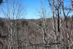 tn mountain view land for sale, land for sale tennessee (6 of 8)