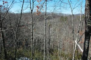 tn mountain view land for sale, land for sale tennessee (8 of 8)