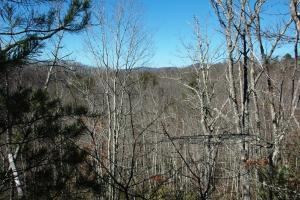 tn mountain view land for sale, land for sale tennessee (5 of 8)