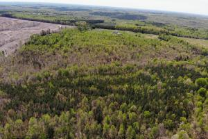 Birch Elmo Homesite in Halifax, VA (11 of 17)