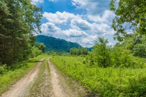 Athens Acreage -  County TN