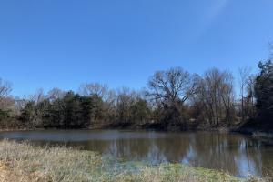 <p>12.7 acres in Scurry with a secluded pond</p>