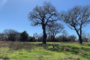 <p>Beautiful place to call home on 12.7 acres in Scurry.&nbsp;</p>