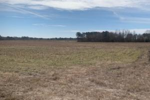 Falling Creek Homesite Lot D - Lenoir County NC