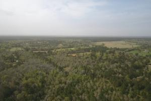 Recreational Retreat/ Ranch Bordering National Forest in San Jacinto, TX (3 of 36)