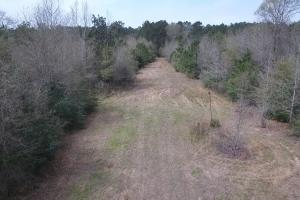 Recreational Retreat/ Ranch Bordering National Forest in San Jacinto, TX (11 of 36)
