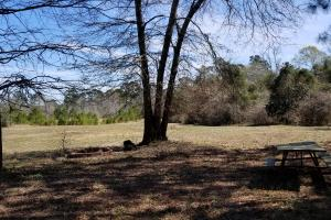 Recreational Retreat/ Ranch Bordering National Forest in San Jacinto, TX (16 of 36)