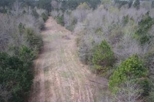 Recreational Retreat/ Ranch Bordering National Forest in San Jacinto, TX (9 of 36)