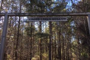 Cahulga Creek Recreation & Timber Tract in Cleburne, AL (20 of 43)