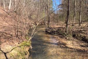Cahulga Creek Recreation & Timber Tract in Cleburne, AL (16 of 43)