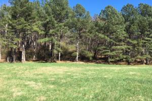 Cahulga Creek Recreation & Timber Tract in Cleburne, AL (19 of 43)