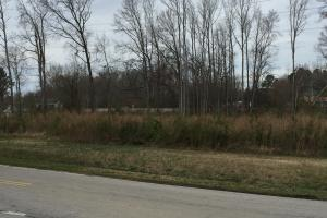 Lucama Wooded Industrial Zoned Lot in Wilson, NC (3 of 4)