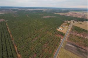Lenoir County Timber/Hunting Tract - Lenoir County NC