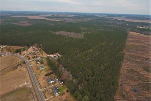 Lenoir County Timber/Hunting Tract in Lenoir, NC (5 of 5)