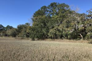 Deepwater Deloss Point Vacant Waterfront Lot in Jasper, SC (15 of 31)