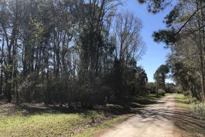 Deepwater Deloss Point Vacant Waterfront Lot in Jasper, SC (25 of 31)