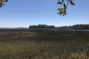 Deepwater Deloss Point Vacant Waterfront Lot in Jasper, SC (2 of 31)