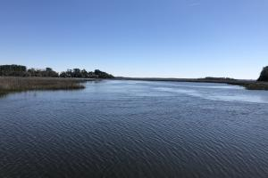 Deepwater Deloss Point Vacant Waterfront Lot in Jasper, SC (8 of 31)