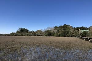 Deepwater Deloss Point Vacant Waterfront Lot in Jasper, SC (7 of 31)