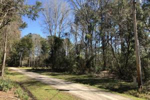 Deepwater Deloss Point Vacant Waterfront Lot in Jasper, SC (24 of 31)