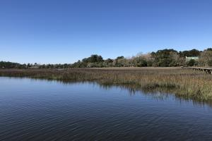 Deepwater Deloss Point Vacant Waterfront Lot in Jasper, SC (1 of 31)