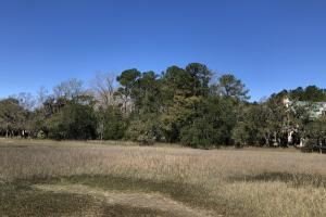Deepwater Deloss Point Vacant Waterfront Lot in Jasper, SC (6 of 31)