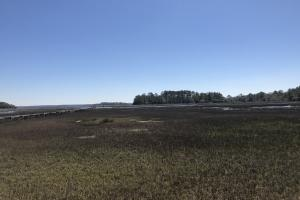 Deepwater Deloss Point Vacant Waterfront Lot in Jasper, SC (16 of 31)