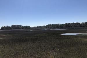 Deepwater Deloss Point Vacant Waterfront Lot in Jasper, SC (17 of 31)