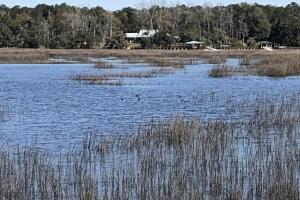 Deepwater Deloss Point Vacant Waterfront Lot in Jasper, SC (14 of 31)