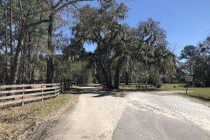 Deepwater Deloss Point Vacant Waterfront Lot in Jasper, SC (28 of 31)